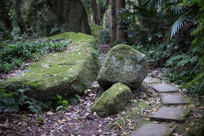 pathway to bush chapel