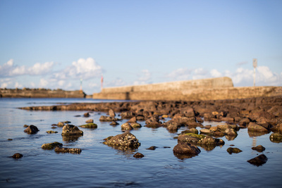 shellharbour harbour break wall