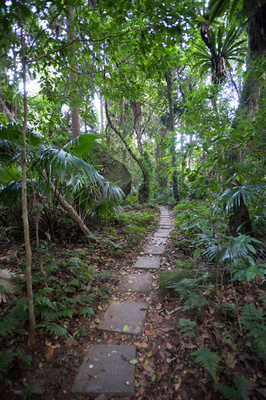 pathway to the bush chapel