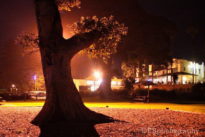 grey park shellharbour at night
