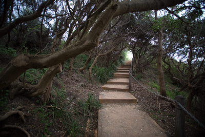 sandon point walk way to beach